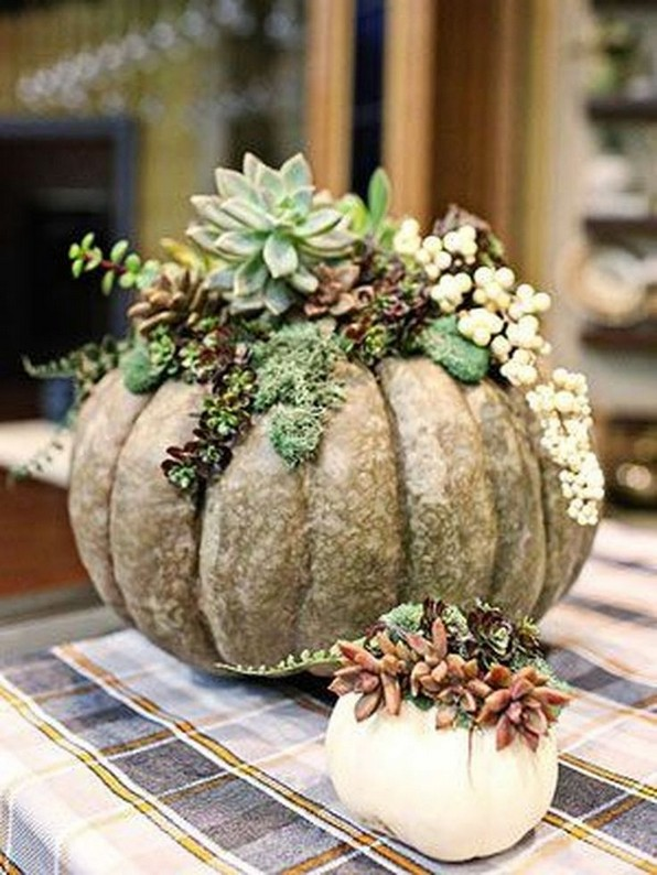 22 Beautiful And Incredible Fall Succulent Ideas 10